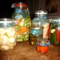 Een kleine greep uit groenten die ik gefermenteerd heb